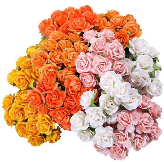100 Cluster Roses Orange Yellow sr0012