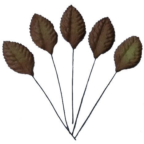 "100 BROWN MULBERRY PAPER LEAVES - 35mm (1"")"