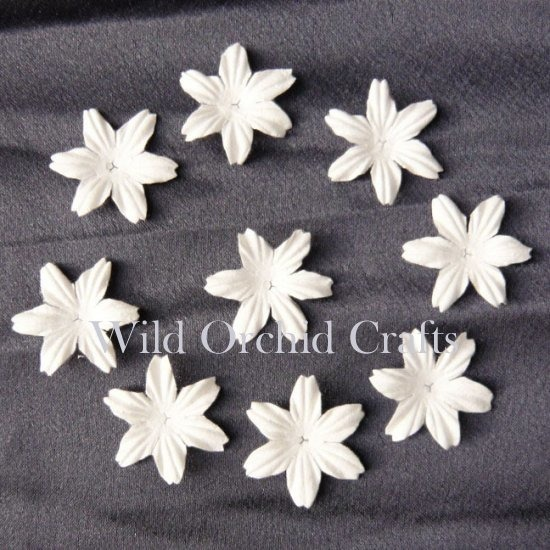 "100 FOUNDATION WHITE BLOOMS (2.5cm / 1"")"