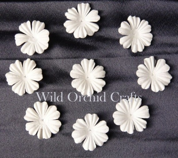 "100 FOUNDATION WHITE BLOOMS (3cm / 1,18"")"