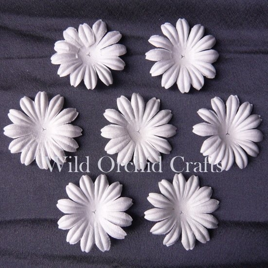 "100 FOUNDATION WHITE BLOOMS (5cm / 2"")"