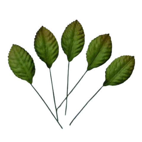 "100 GREEN MULBERRY PAPER LEAVES - 35mm (1"")"