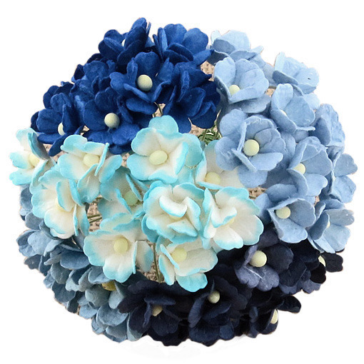 100 MIXED BLUE SWEETHEART BLOSSOM