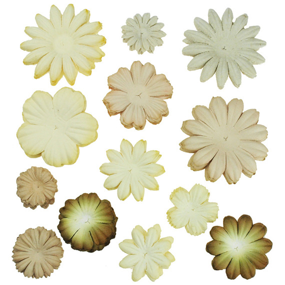 100 MIXED BROWN/CREAM  TONE BLOOM SET