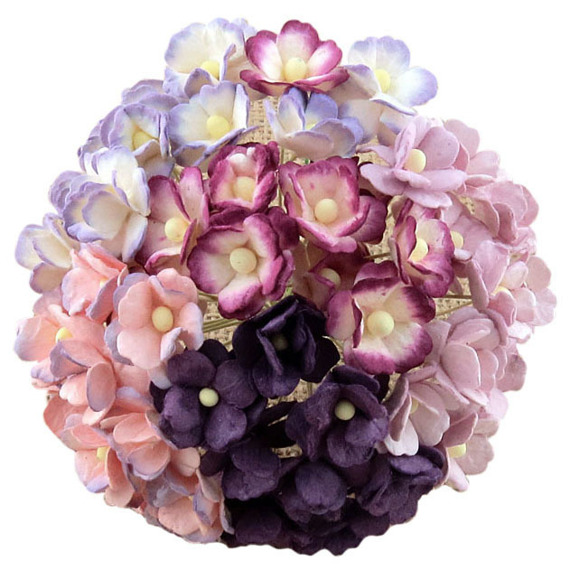 100 MIXED PURPLE/LILAC & WHITE SWEETHEART BLOSSOM