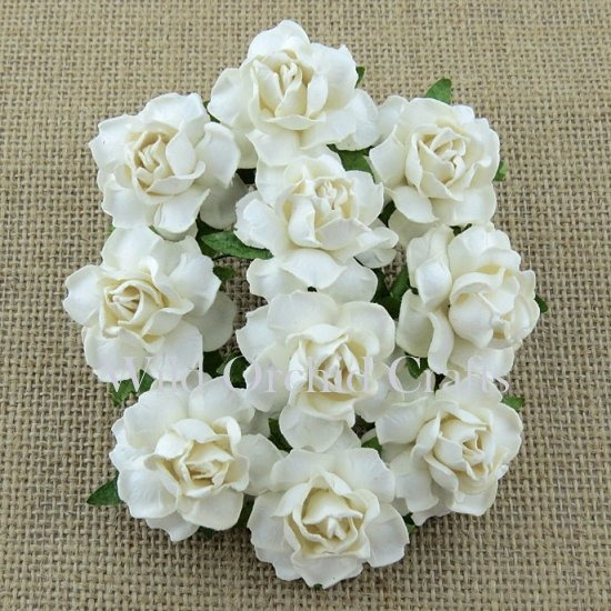 20 WHITE PAPER COTTAGE ROSES