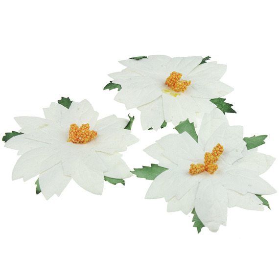 25 LARGE WHITE MULBERRY PAPER POINSETTIAS