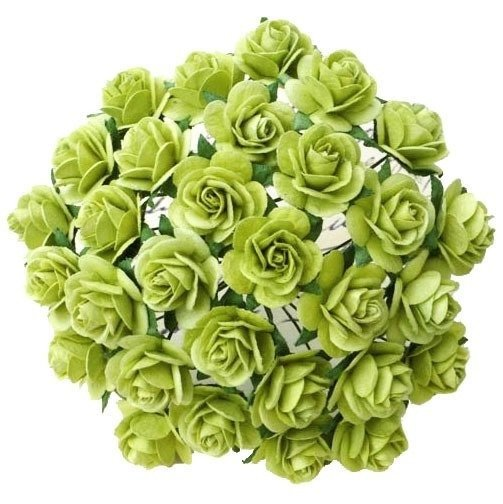 25 LIGHT LIME GREEN MULBERRY PAPER OPEN ROSES 25MM