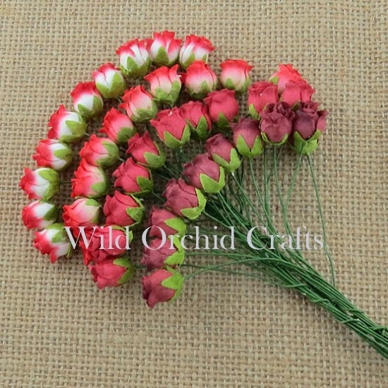 40 MIXED RED TONE HIP ROSEBUDS