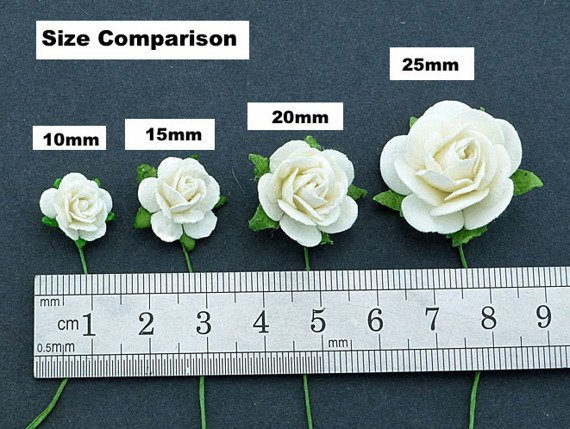 50 2-TONE IVORY/PALE PINK MULBERRY PAPER OPEN ROSES 20 MM