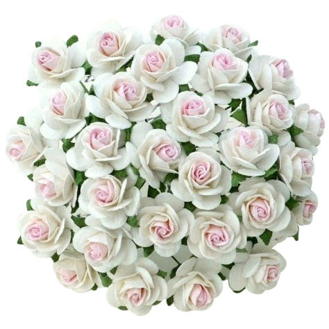 50 2-TONE WHITE WITH BABY PINK CENTRE MULBERRY PAPER OPEN ROSES 10MM