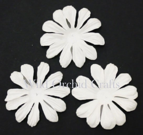 "100 FOUNDATION WHITE BLOOMS (6,5cm / 2,5"")"