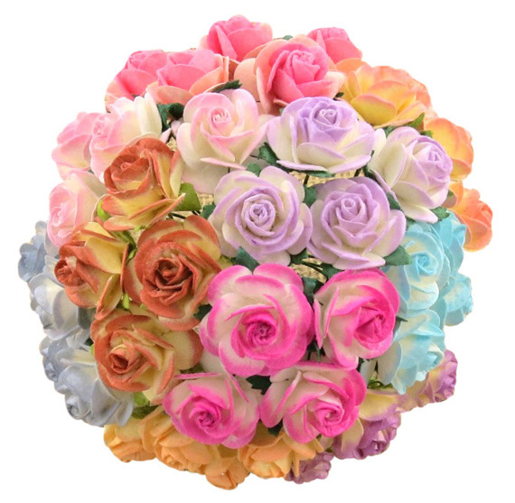 50 MIXED 2-TONE COLOUR OPEN ROSES