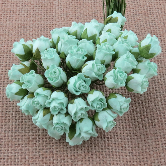 50 PASTEL GREEN HIP ROSEBUDS