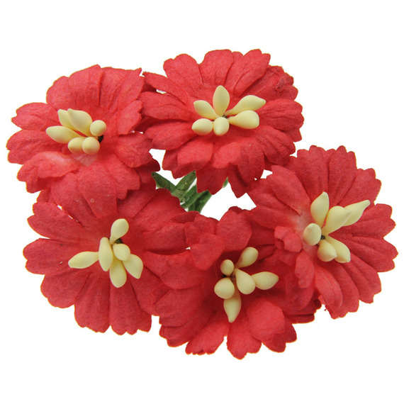 50 RED COSMOS DAISY STEM FLOWERS