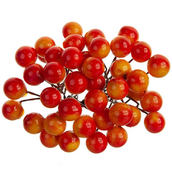 Berries of mountain ash