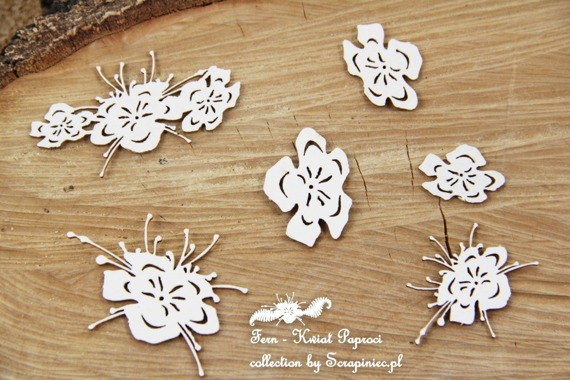 Chipboard - Fern - Fern flowers
