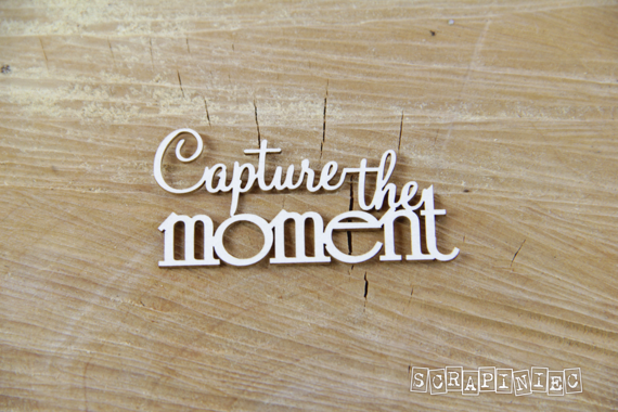 Chipboard Lettering Capture the moment